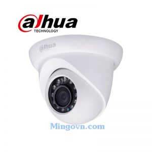 Camera IP Dahua IPC-HDW1120S